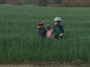 The boys and their cousin exploring the rye!